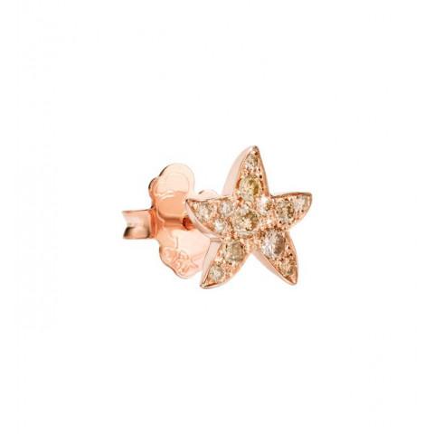 Orecchino stella br. brown