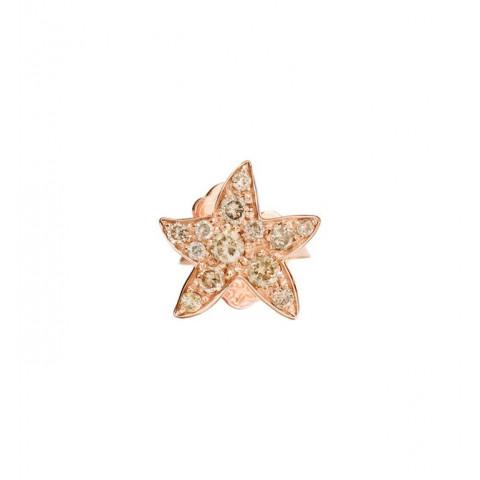 Orecchino stellina br brown